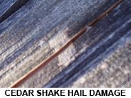 hail damage colorado